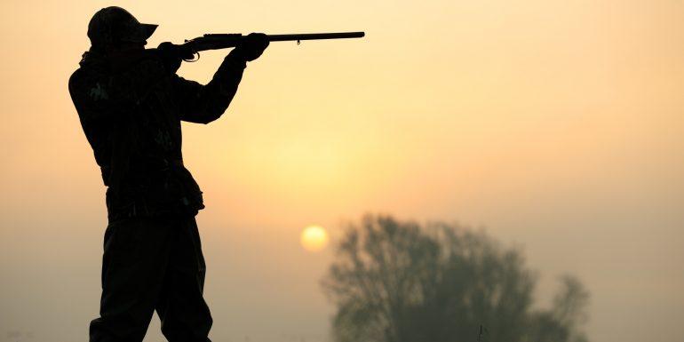 Hunting and hunters